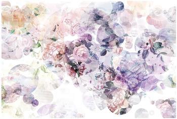 "Komar ""Wish"" 368 x 248 cm (XXL4-060)"