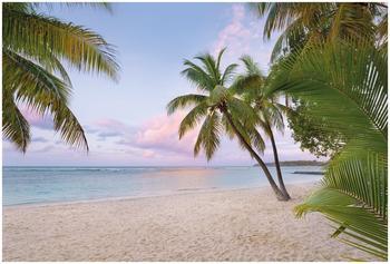 Komar Paradise Morning 248 x 368 cm (XXL4-528)
