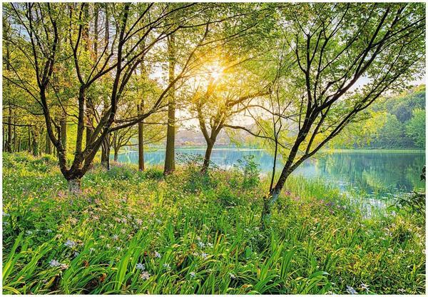 Komar Spring Lake 368 x 254 cm (8-524)