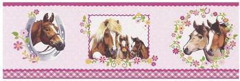 Rasch Pferde (290813)
