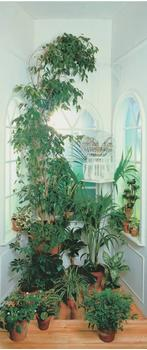papermoon-window-90x200-cm