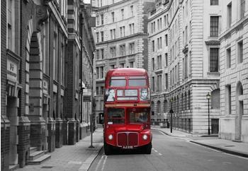 PaperMoon London 350x260 cm