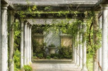 PaperMoon Walkway in Garden 350x260 cm