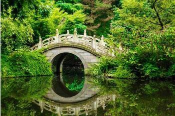 papermoon-japanese-garden-350x260-cm