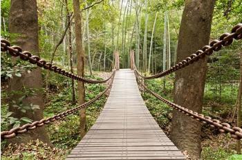 PaperMoon Suspension Bridge 350x260 cm