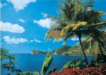 PaperMoon St. Lucia 350 x 260 cm