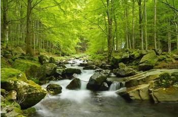PaperMoon Soft Water Stream 350 x 260 cm