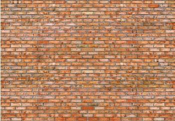 PaperMoon Brickwall 350 x 260 cm