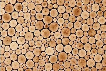 papermoon-round-teak-wood-350-x-260-cm