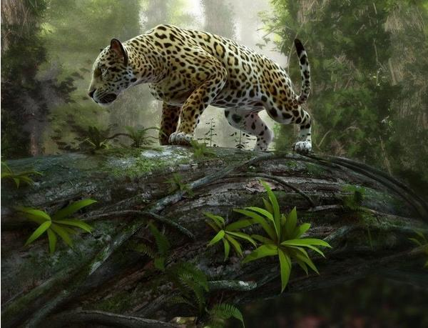 PaperMoon Jaguar on the Prowl 350 x 260 cm