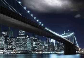 PaperMoon Brooklin Bridge by night 350 x 260 cm