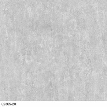 P+S Einfach Schöner grau (02365-20)