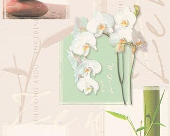 A.S. Creation Faro 4 Orchidee jadegrün (8771-16)