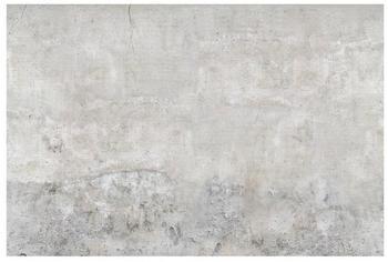 Apalis Shabby Betonoptik 2,25 x 3,36m