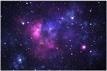Apalis Galaxie 2,9 x 4,32m (94651-4)