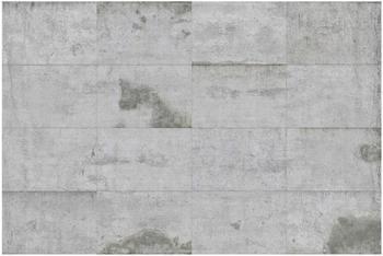 Apalis Große Betonplatten 2,9 x 4,32m (106127)