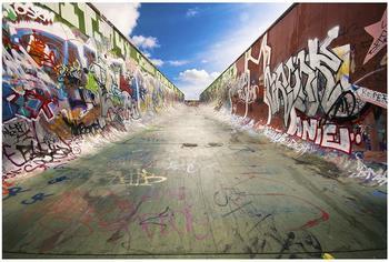 Apalis Skate Graffiti 2,55 x 3,84m (94797)