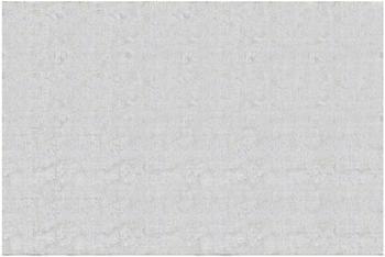 Apalis Beton Ciré hell 2,9 x 4,32m (106121)