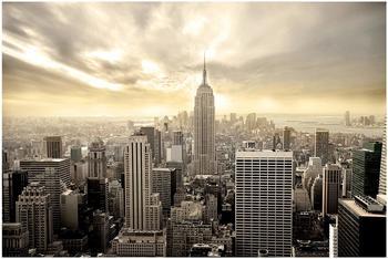 Apalis Manhattan Dawn 2,9 x 4,32m (94707-4)