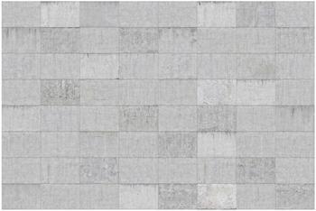 Apalis Beton Ziegeloptik grau 1,9 x 2,88m (106126)