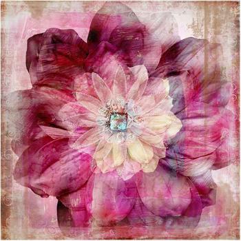 Apalis Grunge Flower 3,36 x 3,36m (95348-4)