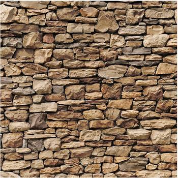 Apalis Amerikanische Steinwand 2,88 x 2,88m (98424)