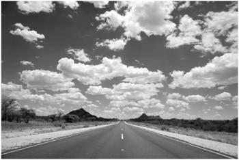 Apalis Route 66 II 2,9 x 4,32m (94785-4)