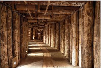 Apalis Alte Goldmine 2,9 x 4,32m (94529-4)