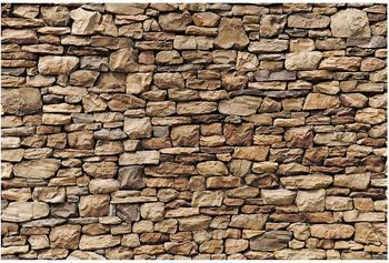 Apalis Amerikanische Steinwand 2,55 x 3,84m (94534)