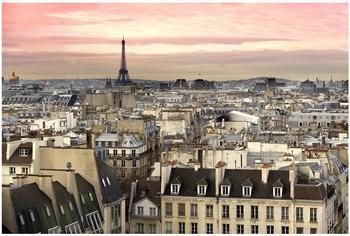 Apalis Paris hautnah 2,55 x 3,84m (94765)