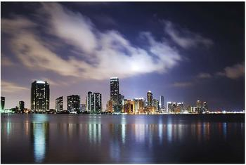 Apalis Miami bei Nacht 2,55 x 3,84m (94719)