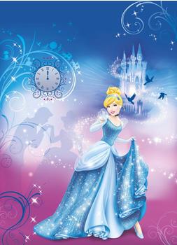 Komar Disney Cinderella Night