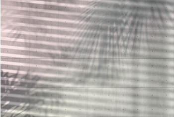 komar-shadows-368-x-248-cm