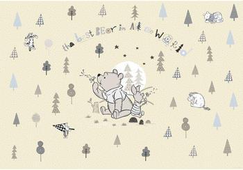 komar-disney-winnie-pooh-best-bear-268-x-254-cm