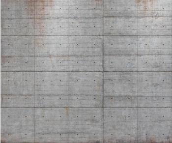 Komar Concrete 300 x 250 cm