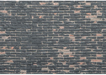 Komar Painted Bricks 368 x 248 cm