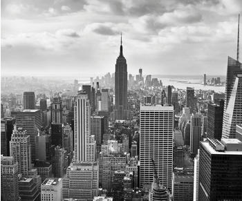 Komar NYC Black 300 x 250 cm