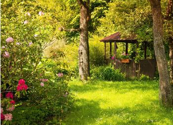 papermoon-magic-garden-400-x-260-cm