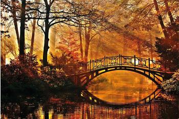 papermoon-misty-park-bridge-400-x-260-cm