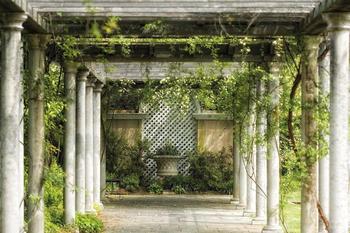 papermoon-walkway-in-garden-gruen-400-x-260-cm
