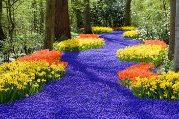 papermoon-spring-flowers-400-x-260-cm