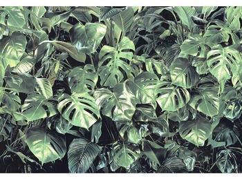 Komar Fototapete Papier 8-333 Verdure 368 x 254 cm