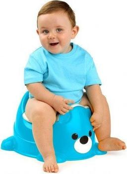 Molto Bear Potty blue