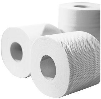 CWS-boco Recycling Natur Toilettenpapier 2-lagig (48 Rollen)