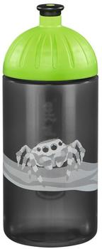 Step by Step Trinkflasche Jumping Spider