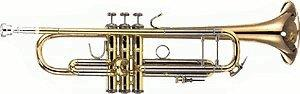 Bach LT 180-43 G/ML