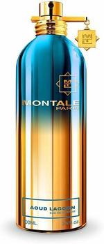 Montale Aoud Lagoon Eau de Parfum (100ml)