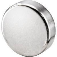 basetech-magnet-x-t-3mm-x-10mm-kreis-silber-10-st-bt-2266565