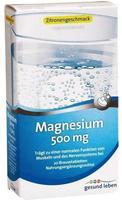 Gehe Gesund leben Magnesium 500 mg Brausetabletten