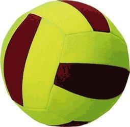 Sport-Thieme Neopren Volleyball